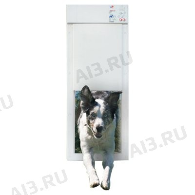 Automatic Pet Door (Large)
